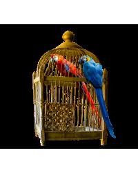 Купить Клетки для птиц в интернет зоомагазине guppi-kazan.ru