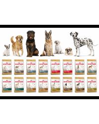 Сухой корм для собак Royal Canin, ProPlan